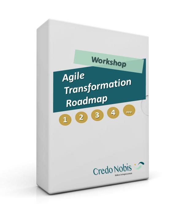 CredoNobis Coaching - Agile Transformation Roadmap workshop - action plan for the changes