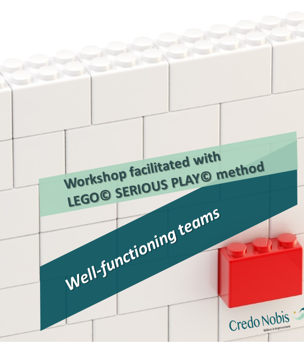 CredoNobis Coaching - Well-functioning teams workshop _ LEGO SERIOUS PLAY method